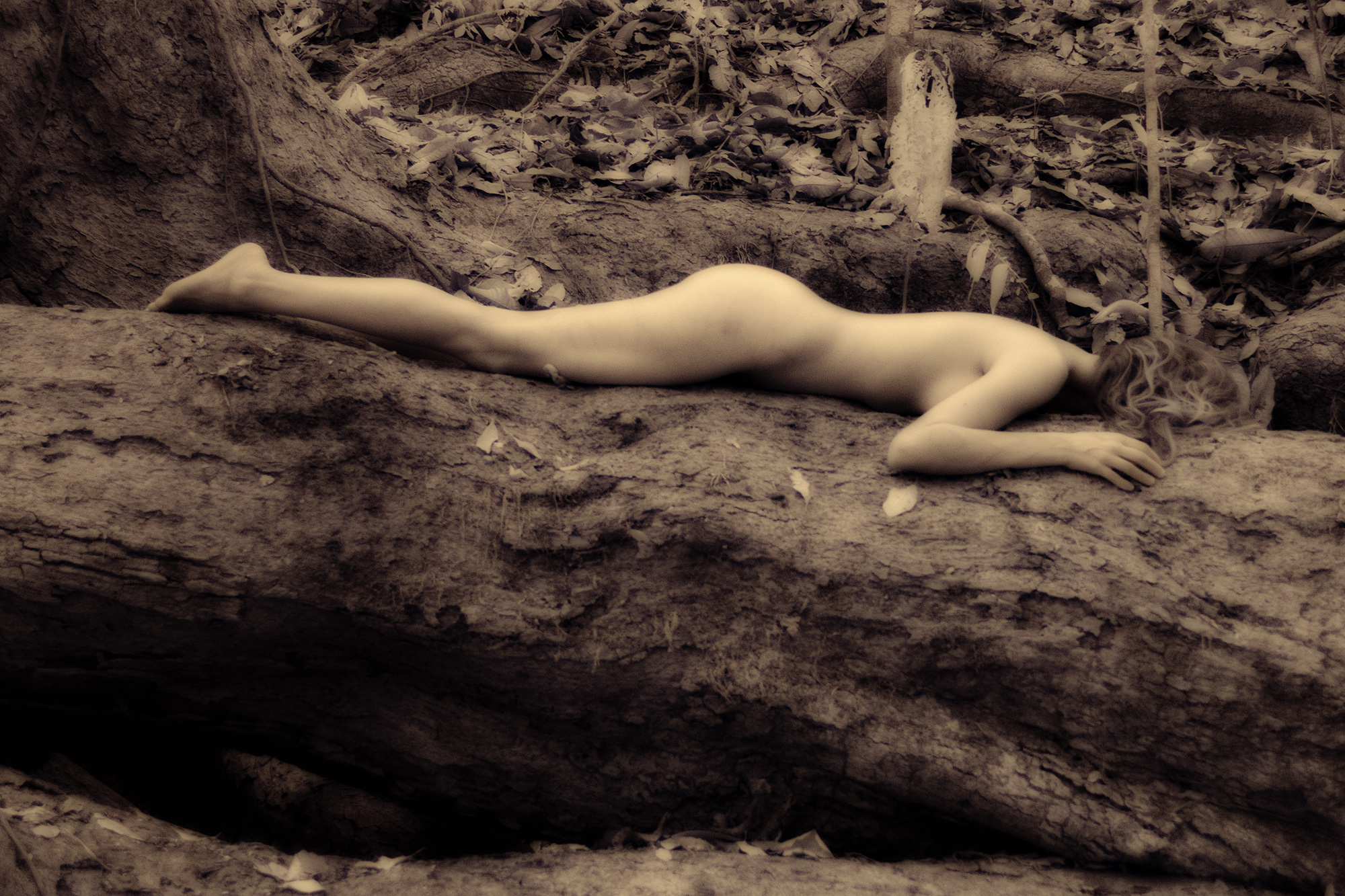 Nude on log