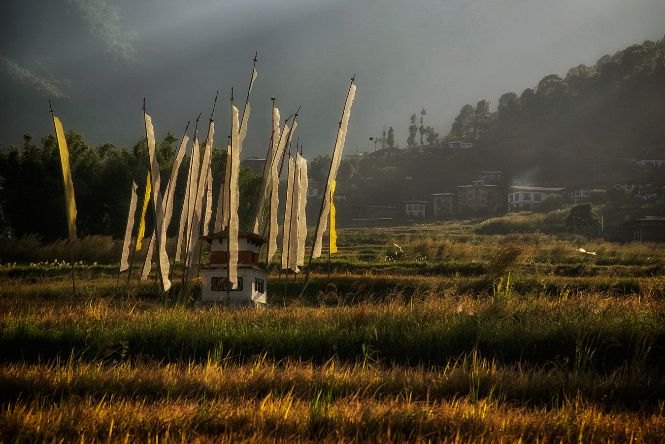 Beautiful Bhutan pictures