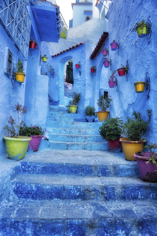Blue steps vertical.jpg