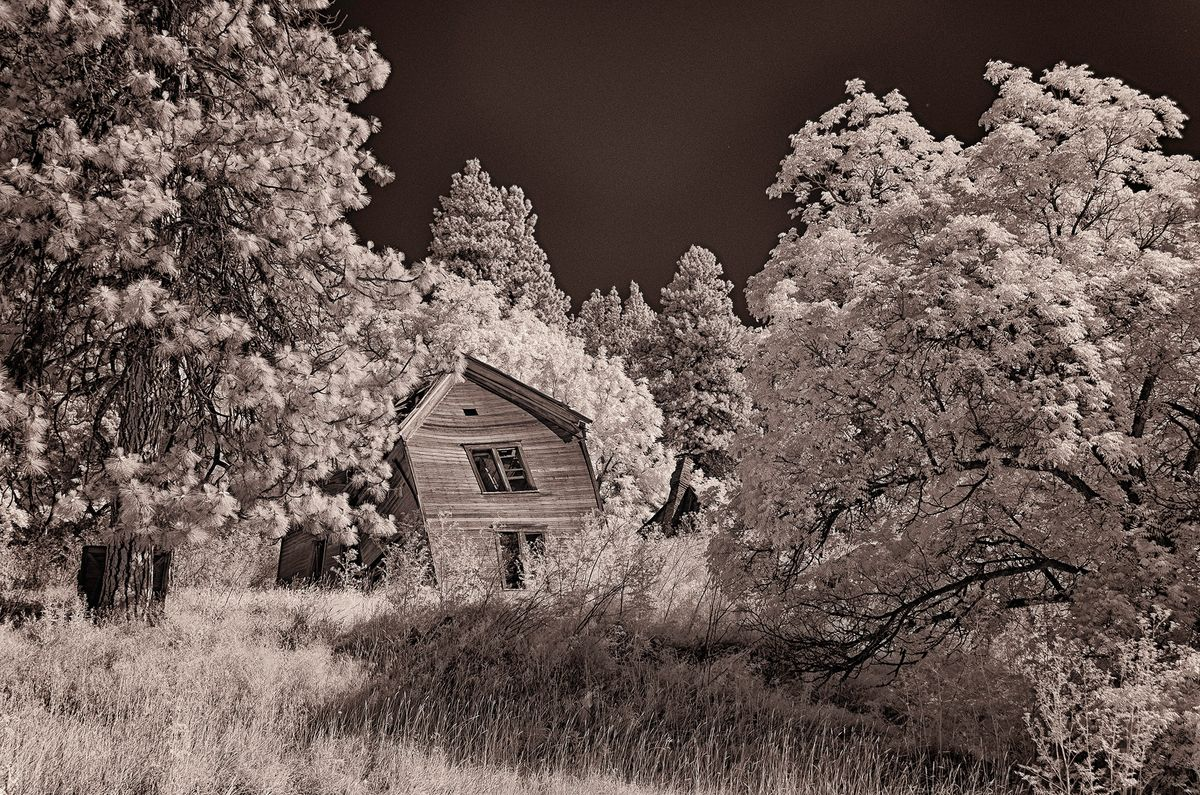 Infra red crooked house