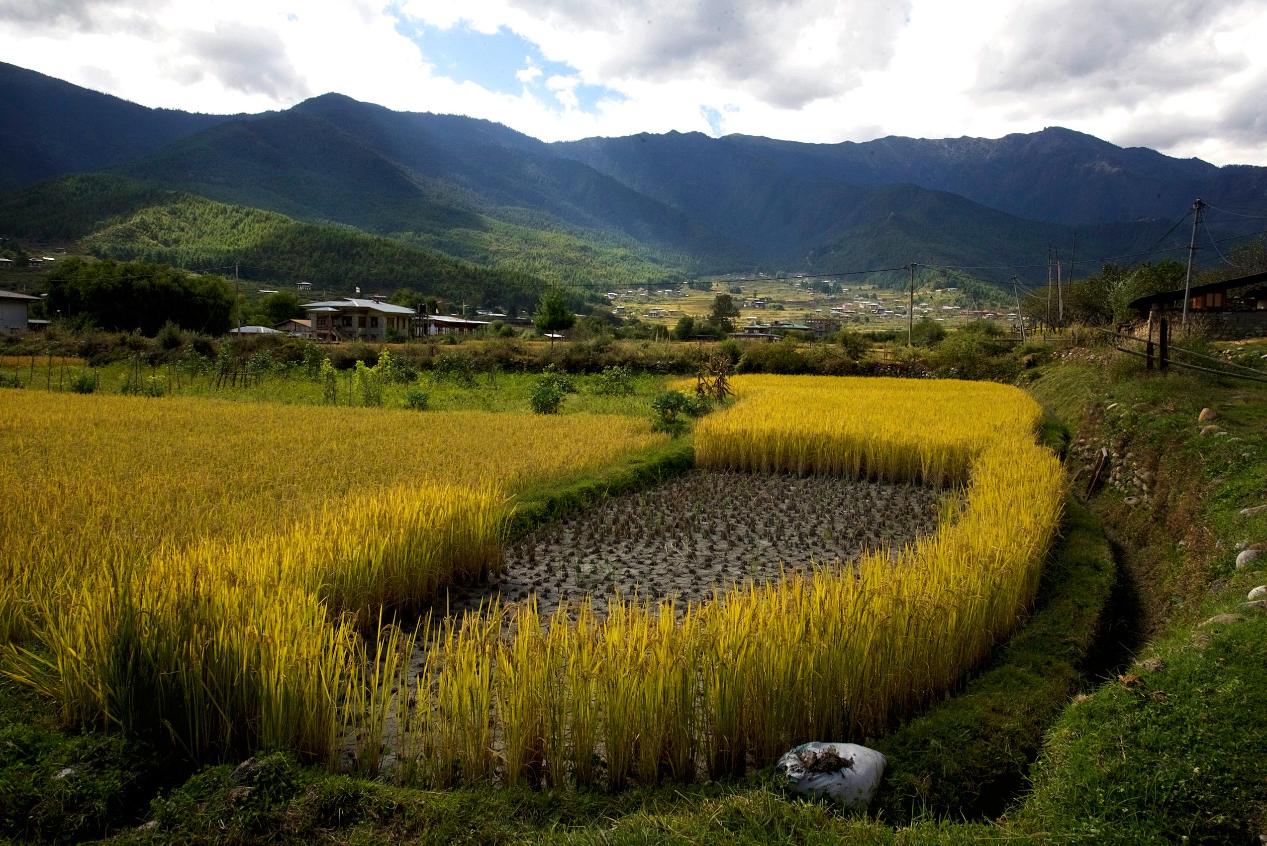 Bhutan landscape photos