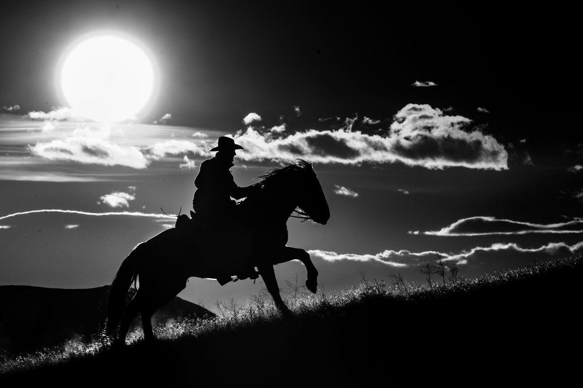 Dramatic Rider.jpg