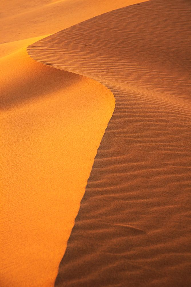 beautiful desert photography