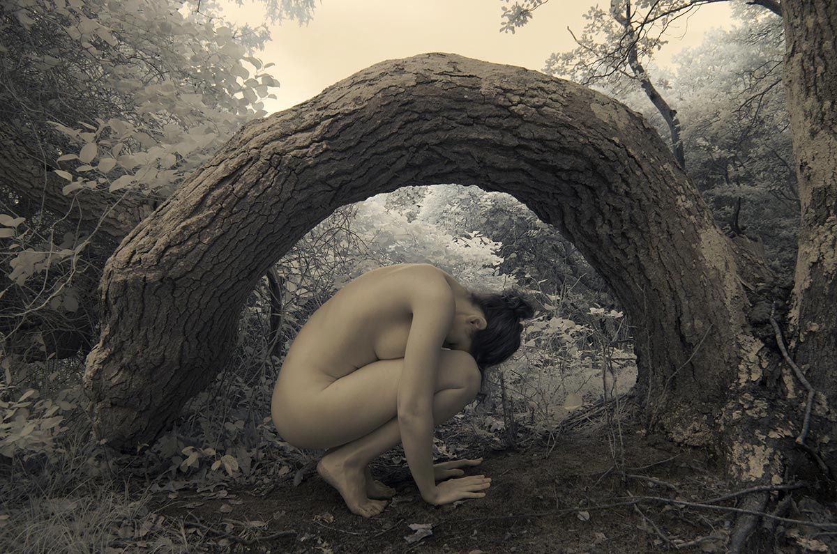 Nude in the Banyon tree