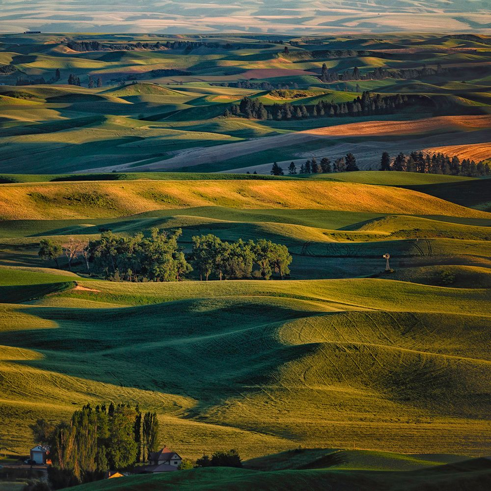 Steptoe Palouse