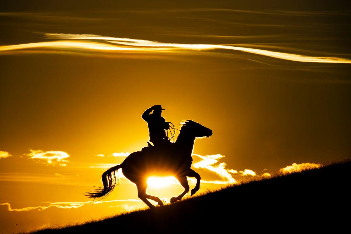 Silhouette rider