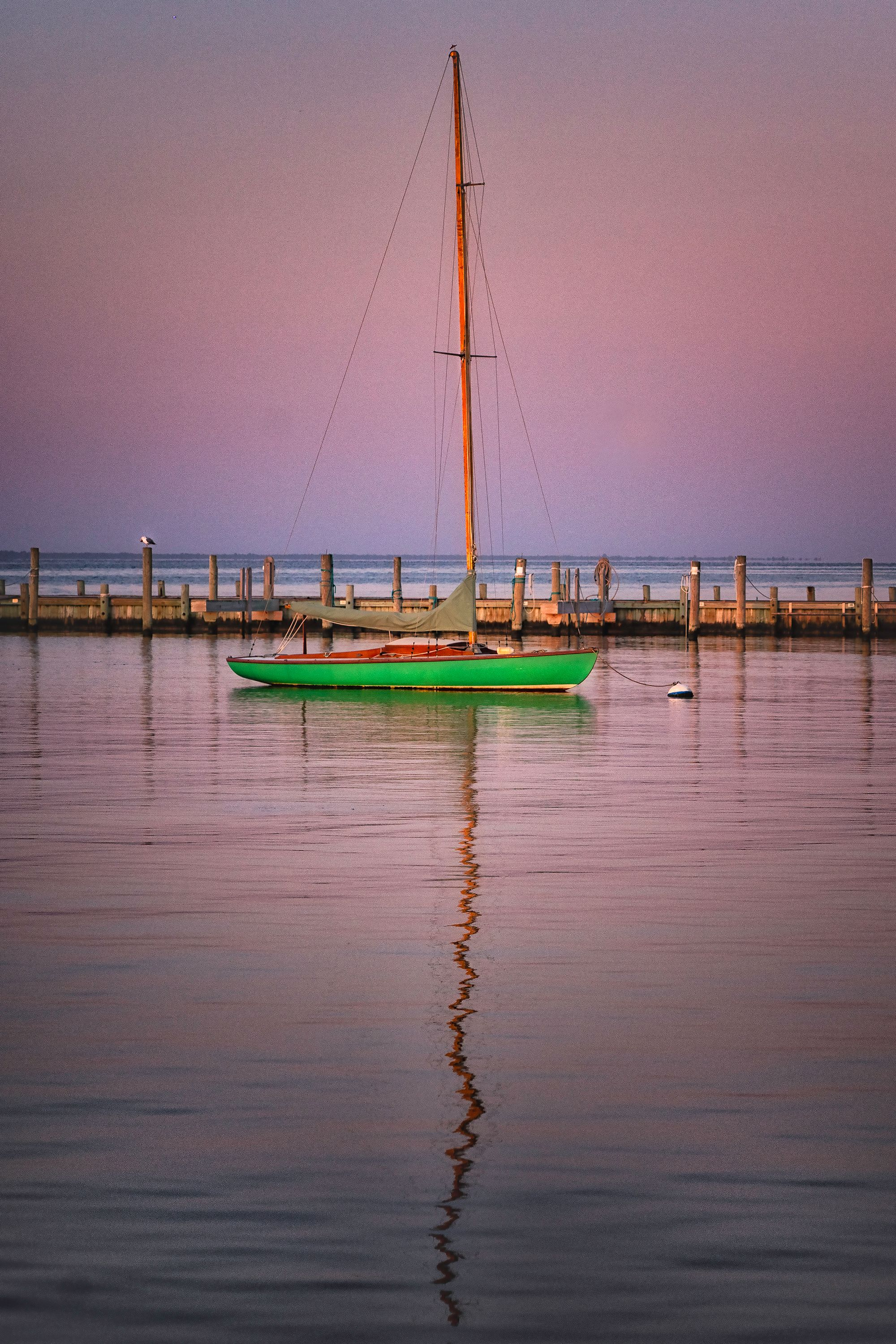 Tranquil Sail
