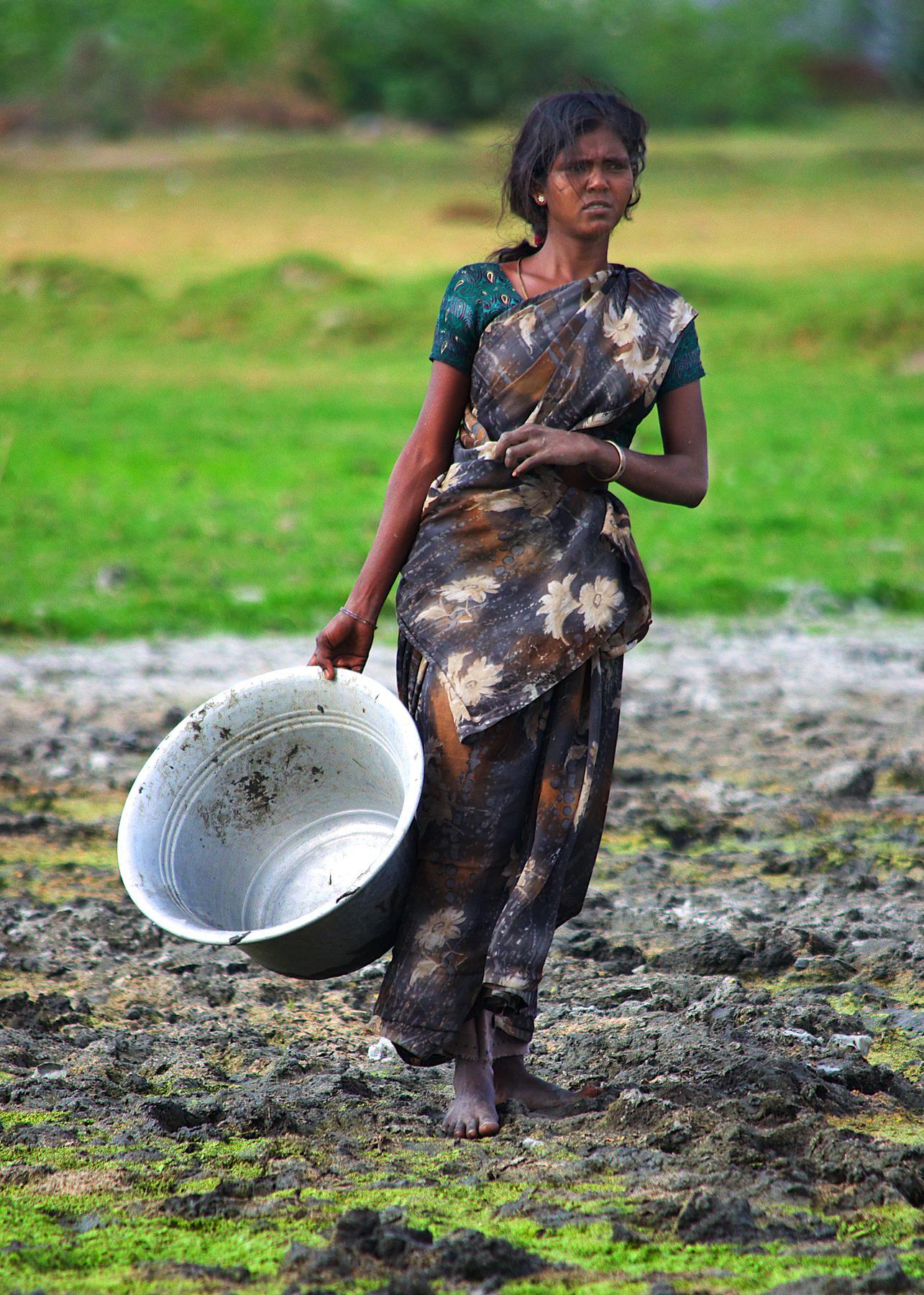 Farming in India