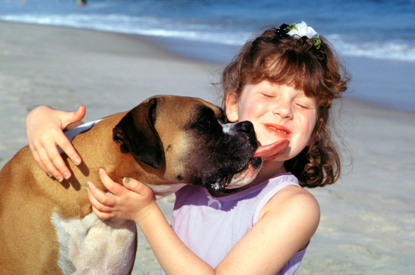 a dog is a girl's best friend