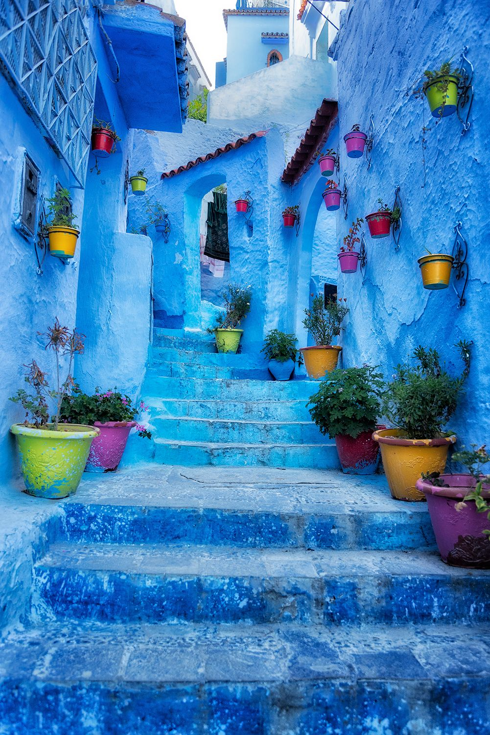 Blue steps vertical.jpg