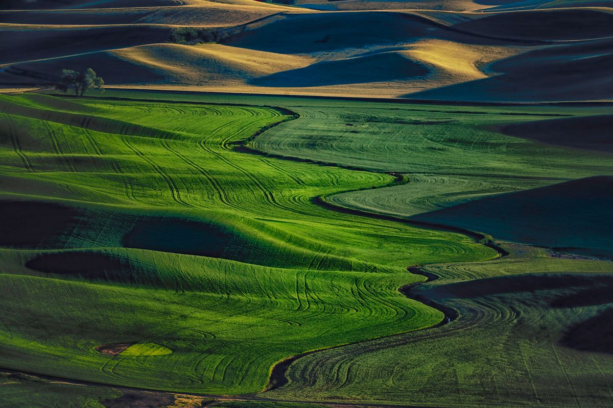 Steptoe Butte at sunset