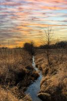 stream through field in Wisconsin in winter at sunset
