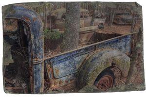 Tree & Truck