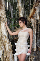 Model and trees