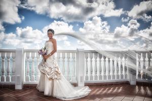 Bride's Veil blowing in the wind oceanside