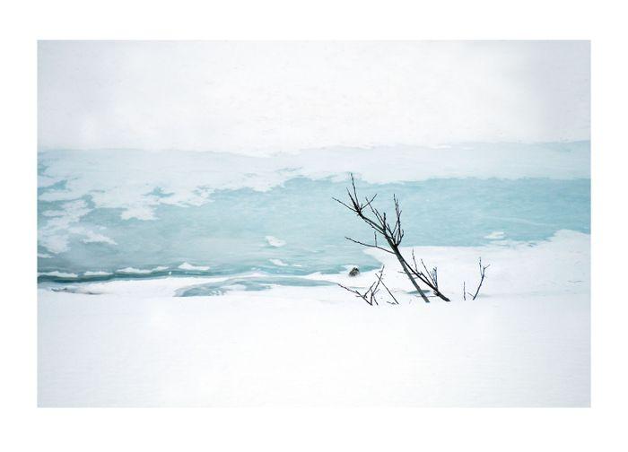 Ice 9.jpg