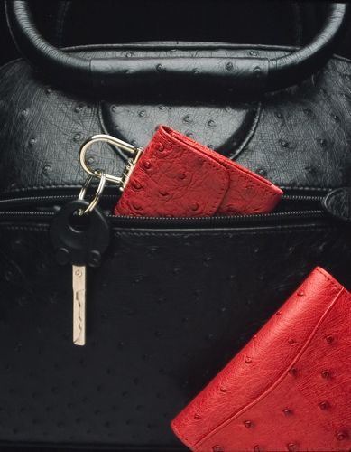 ostrich purse and accessories