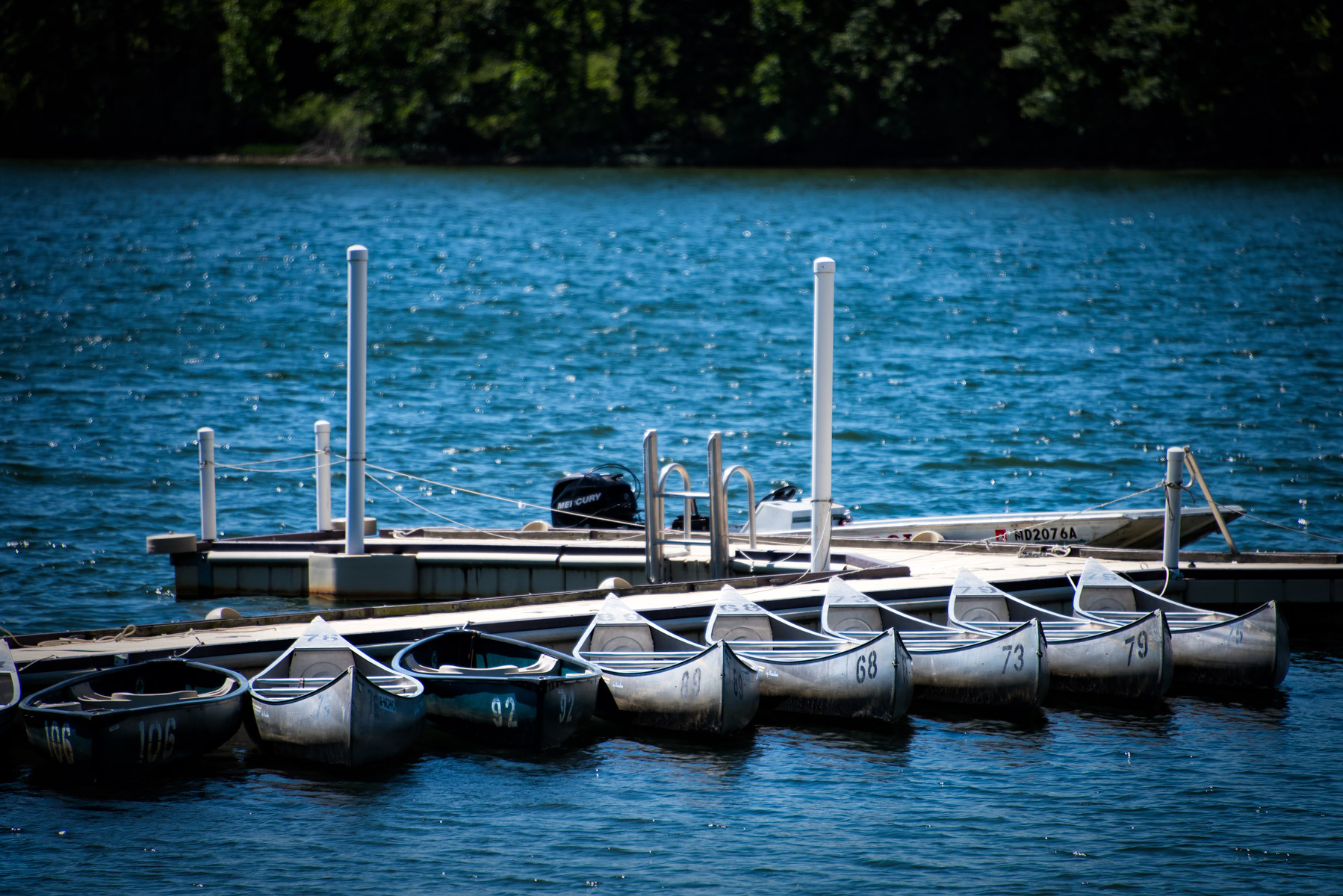 row boats tied to dock in river