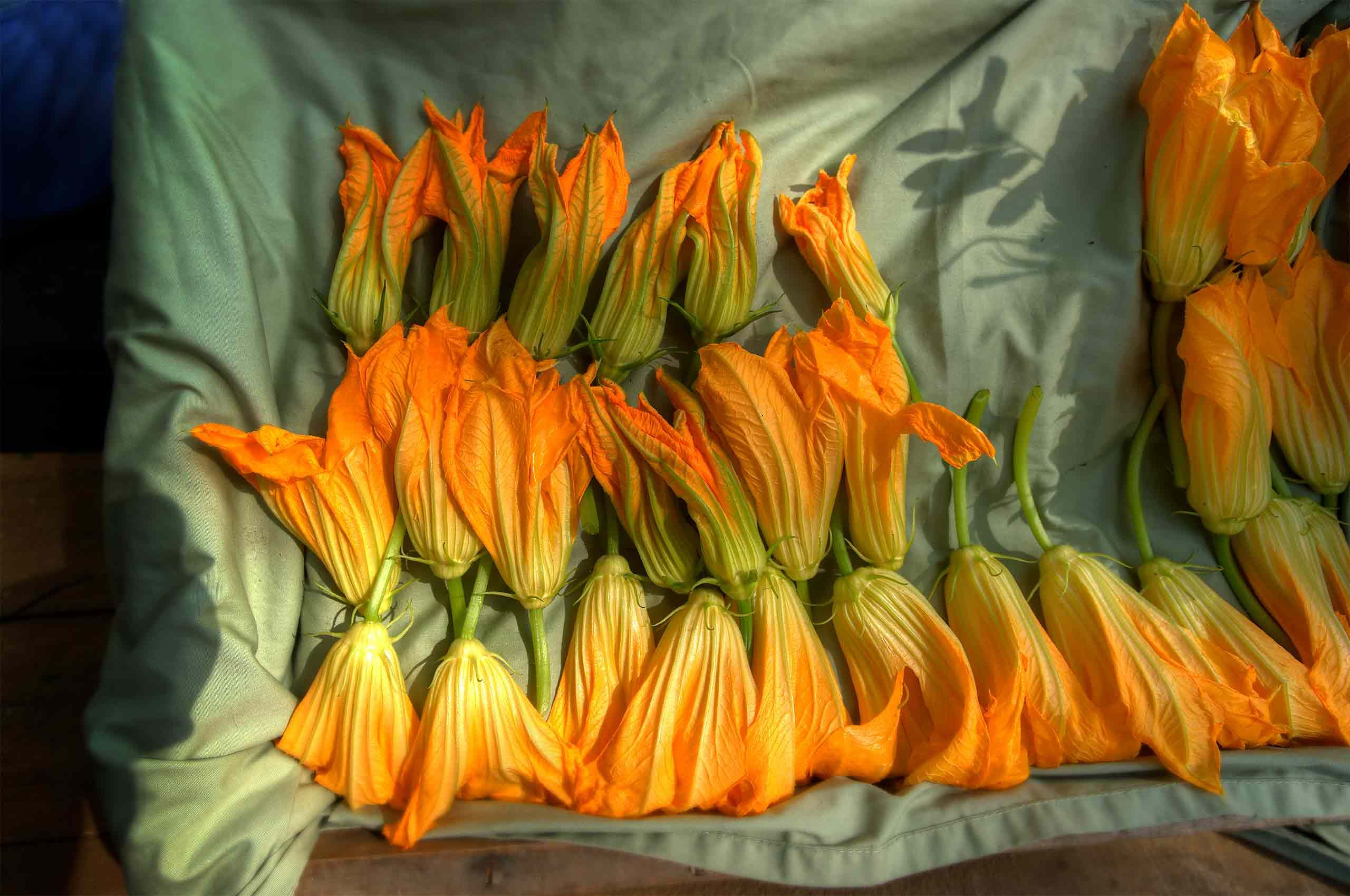 Squash blossoms Blue berries farmers  market Portland Maine