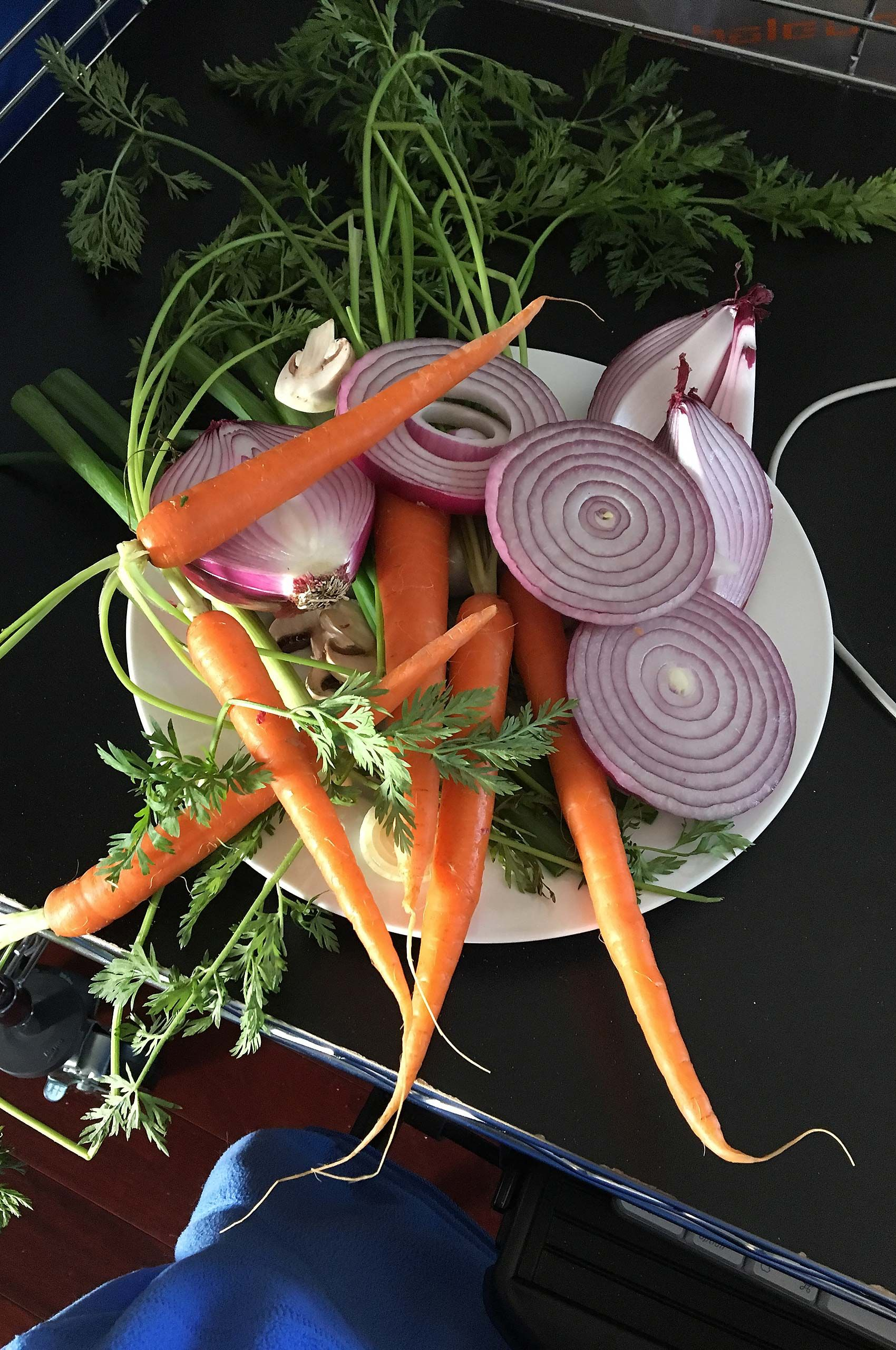 Sliced up onions and carrots on a photo set