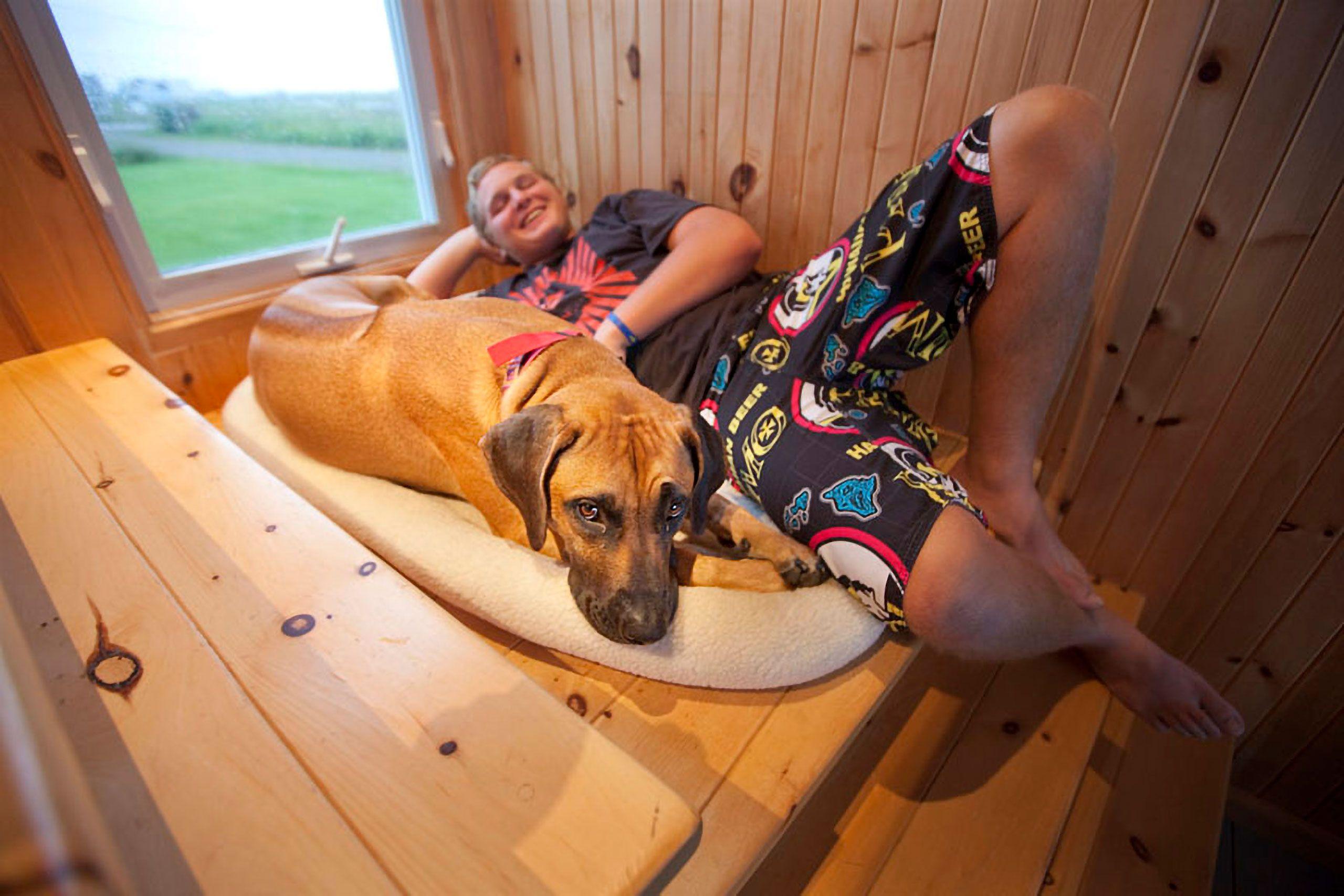 bog and dog relaxing cuddling Jack Roos with Rhodesian ridgeback in the summer  Magdalen Islands Îles de la Madeleine Harve Aubert Quebec Canada