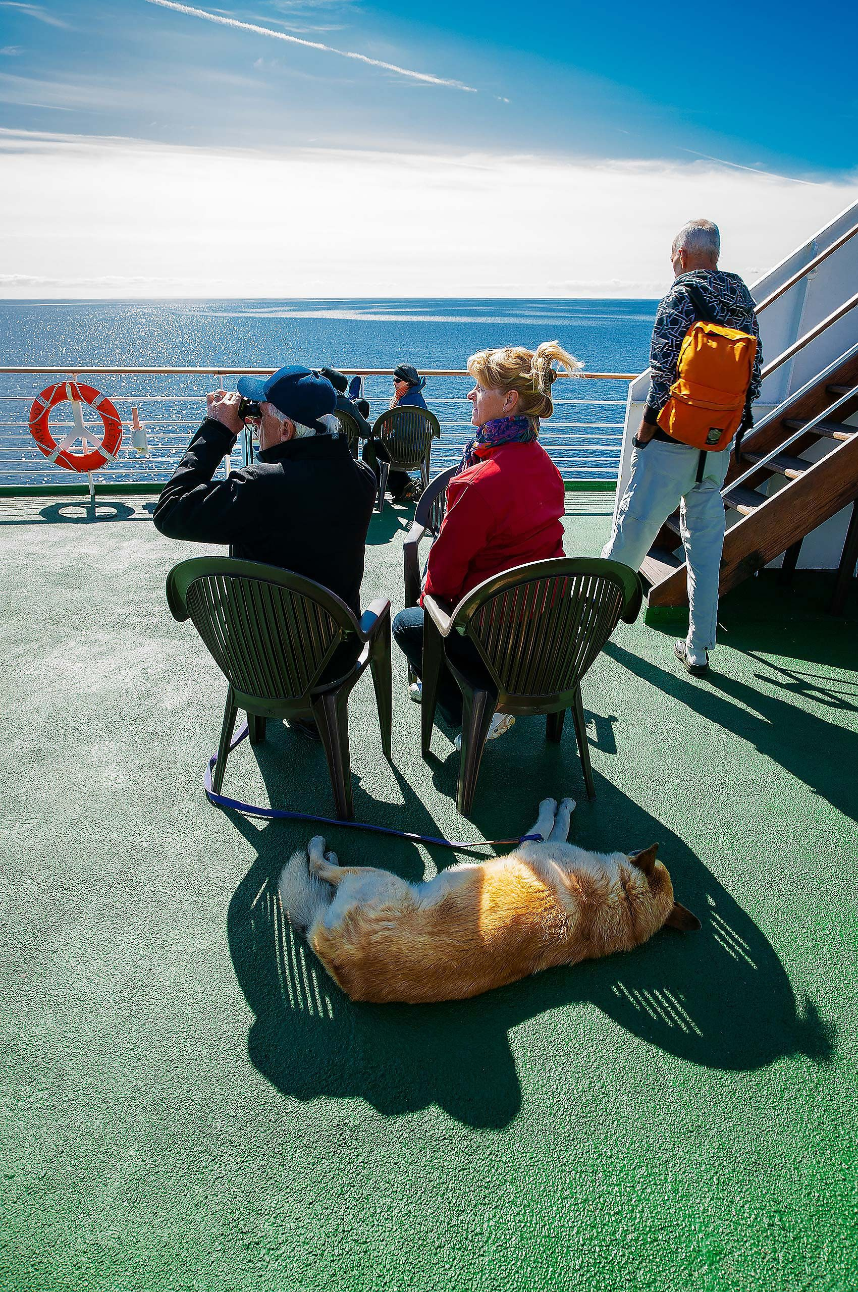 on the ferry to les iles de madeleine quebec CMTA vaction sleeping dog on deck