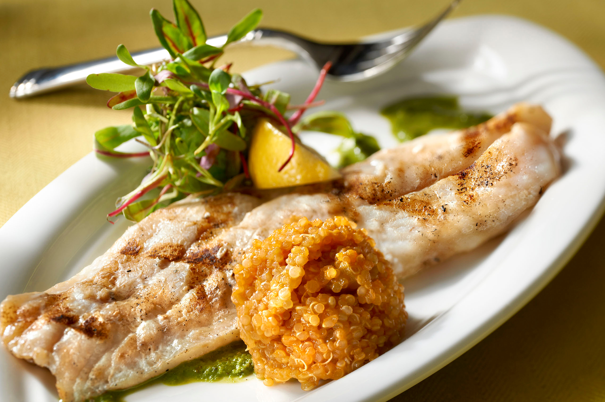 Grilled Snapper with Quinoa