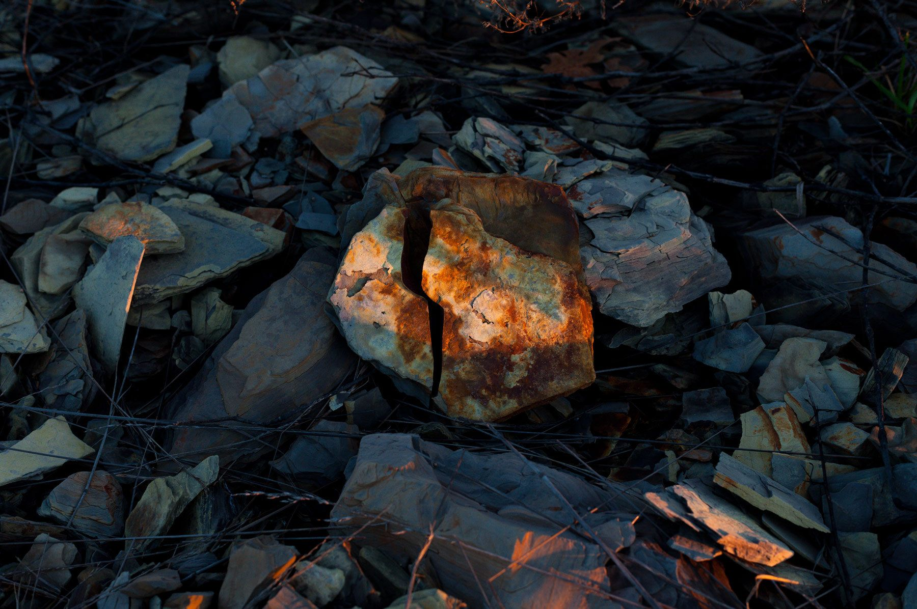 1markomihailovich35photoroadtrips023.jpg