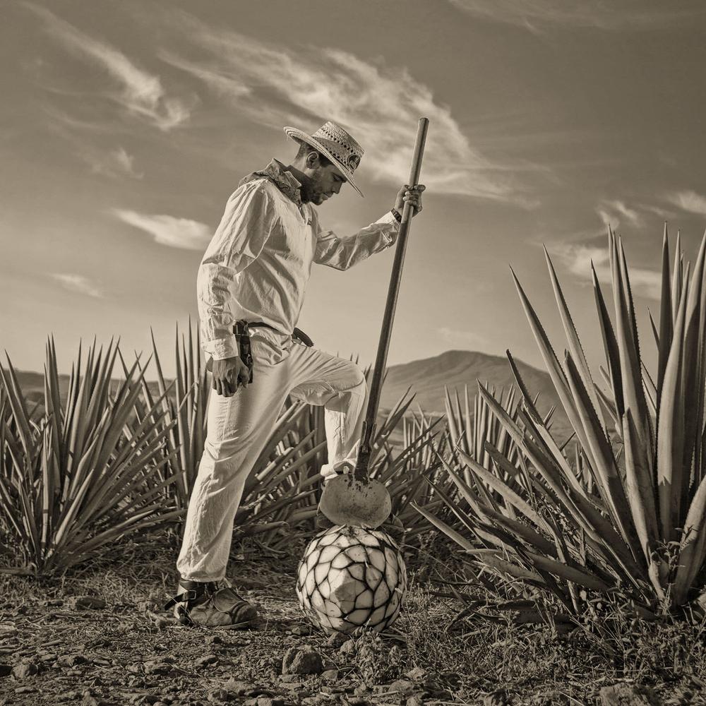 Tequila41.jpg