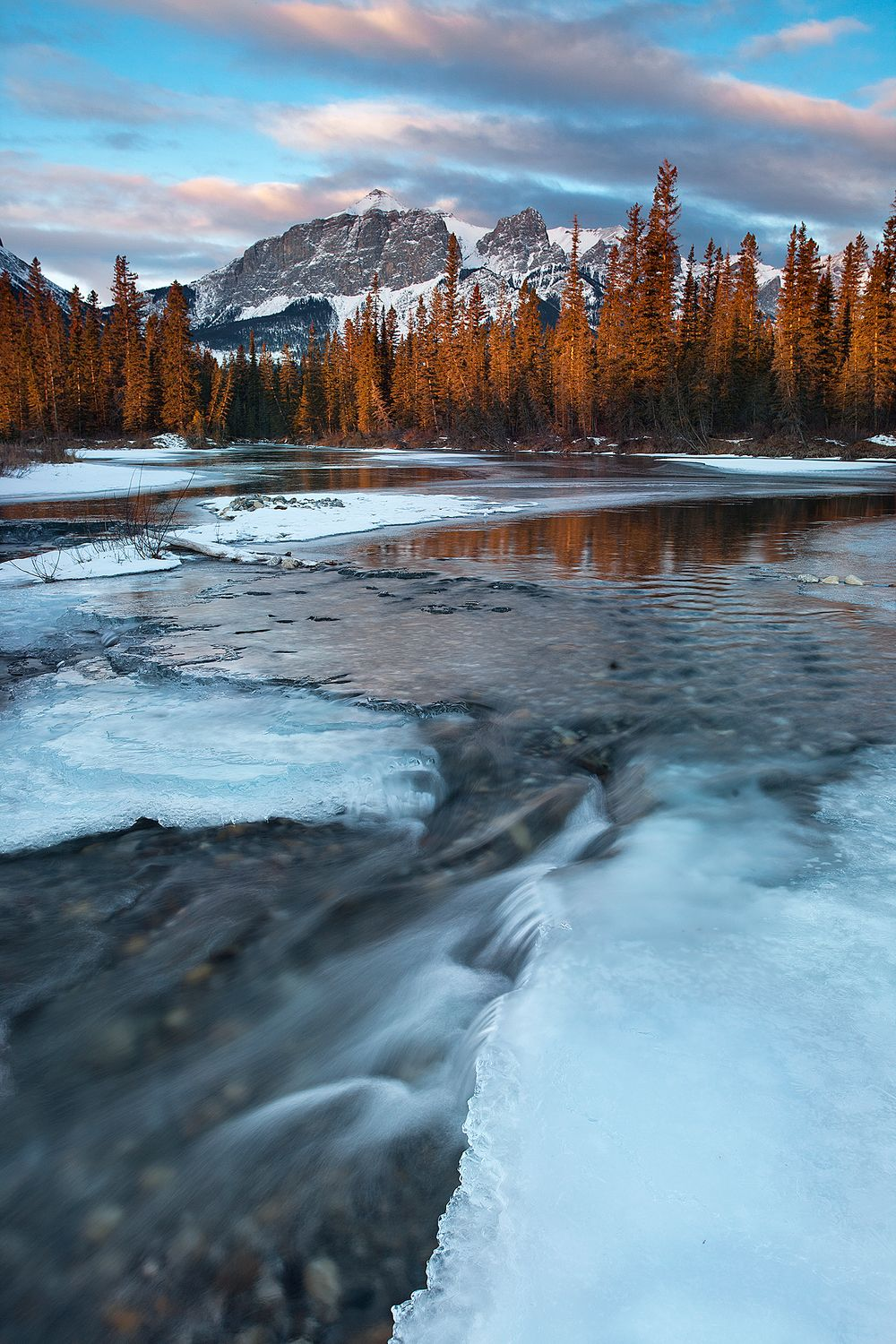 1canmore_bow_2.jpg