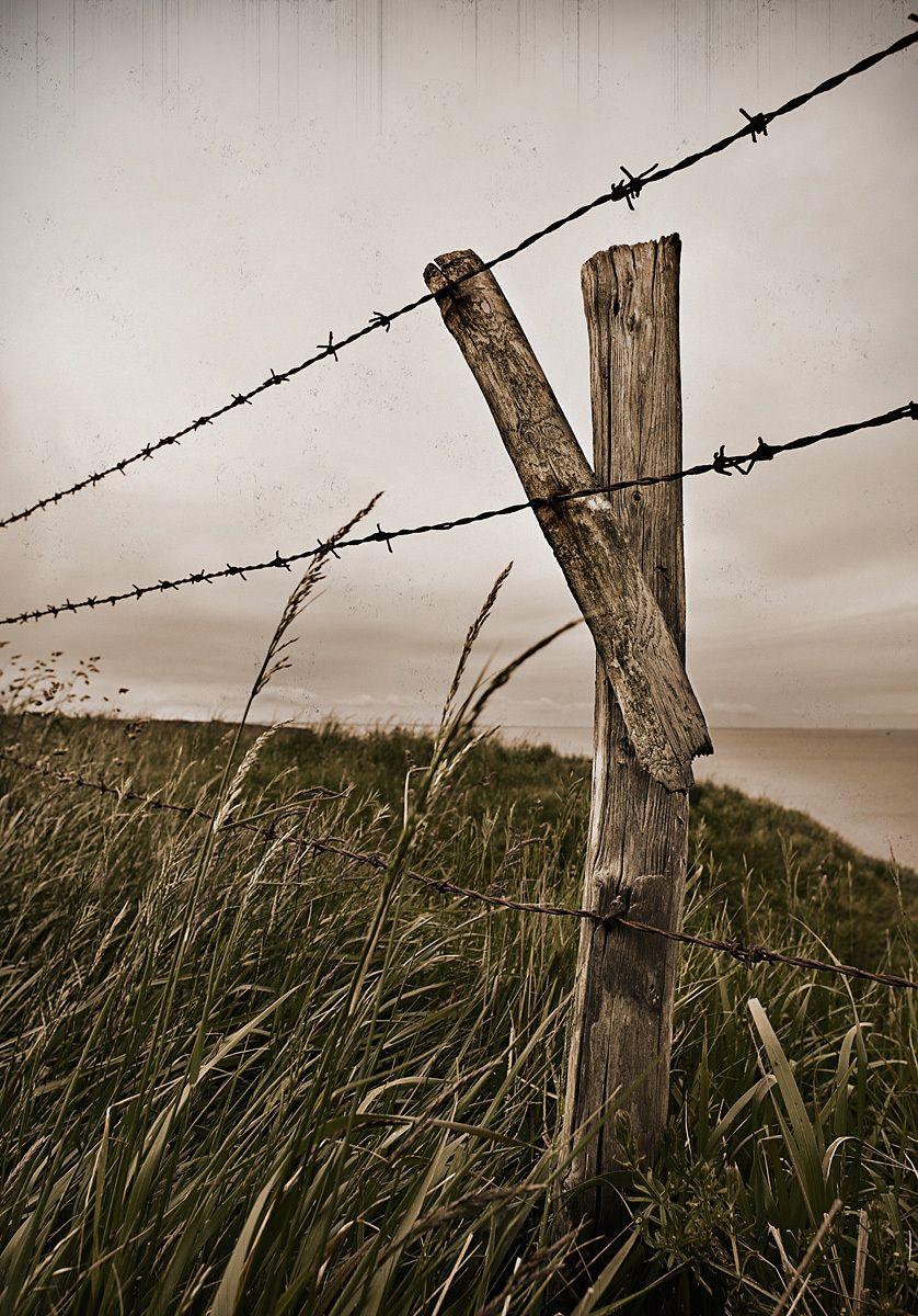 1pointe_du_hoc_fence.jpg