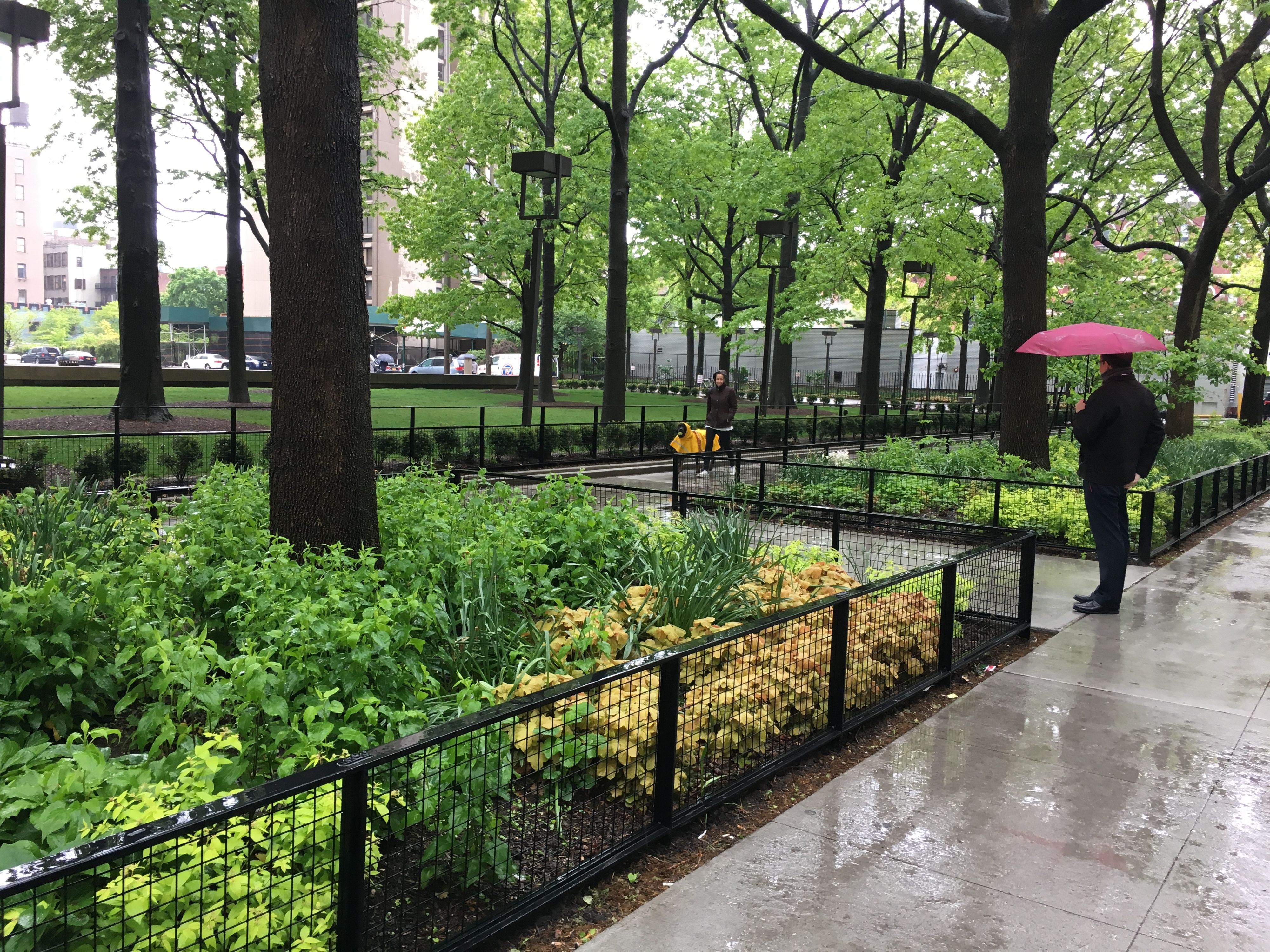 Bleecker Street Plaza at Silver Towers
