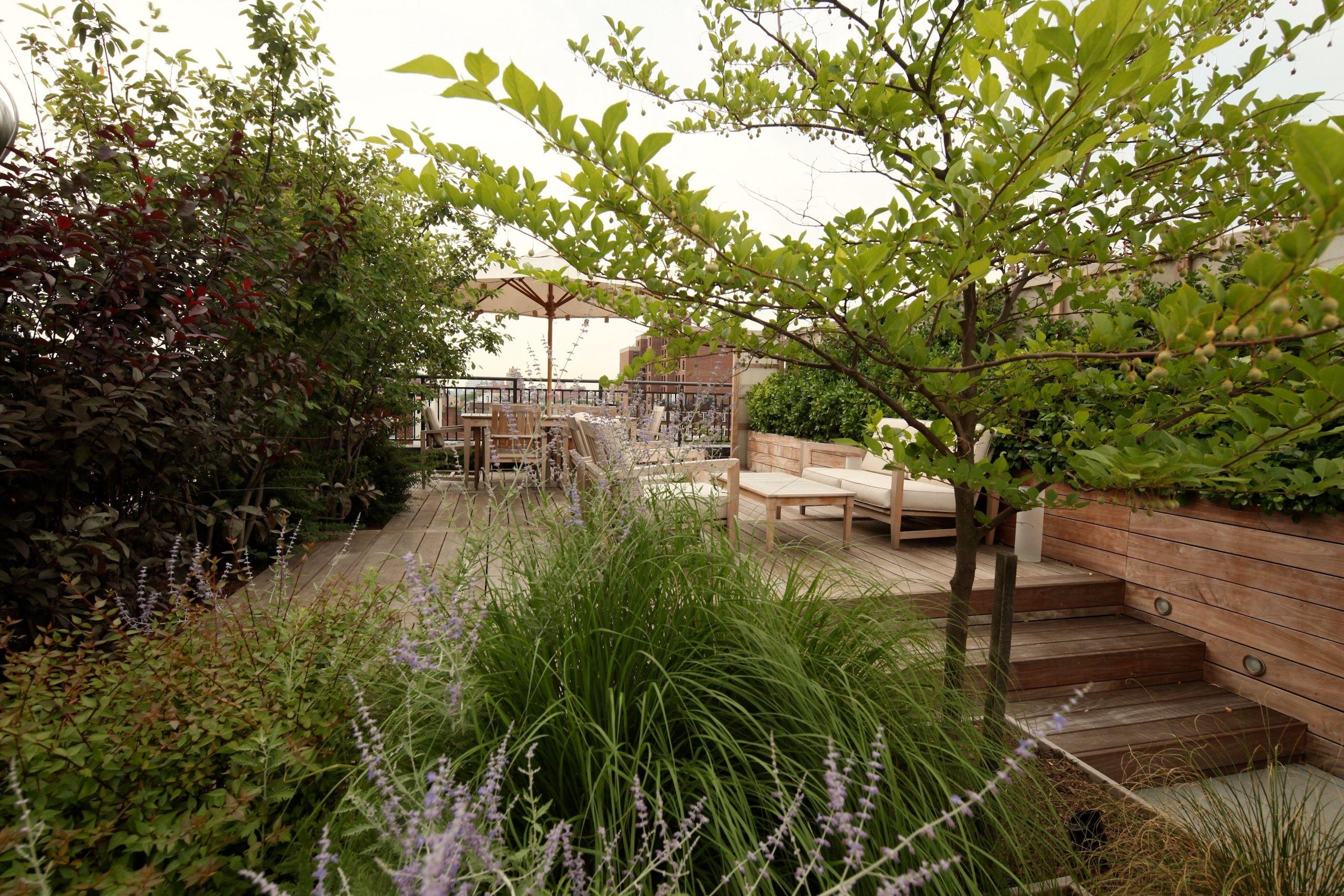 LaGuardia Place Roofgarden