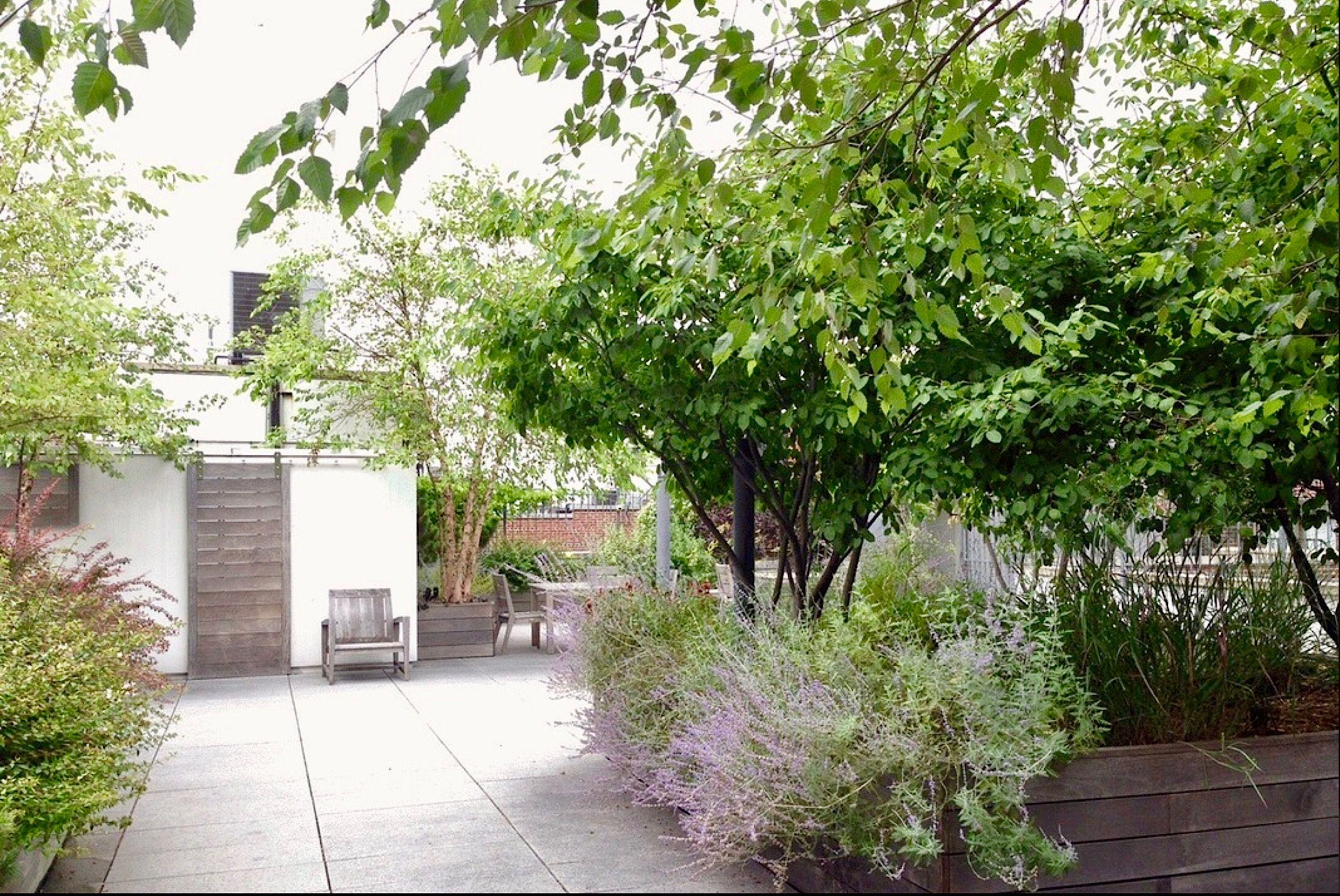 Park Avenue South Roof Garden