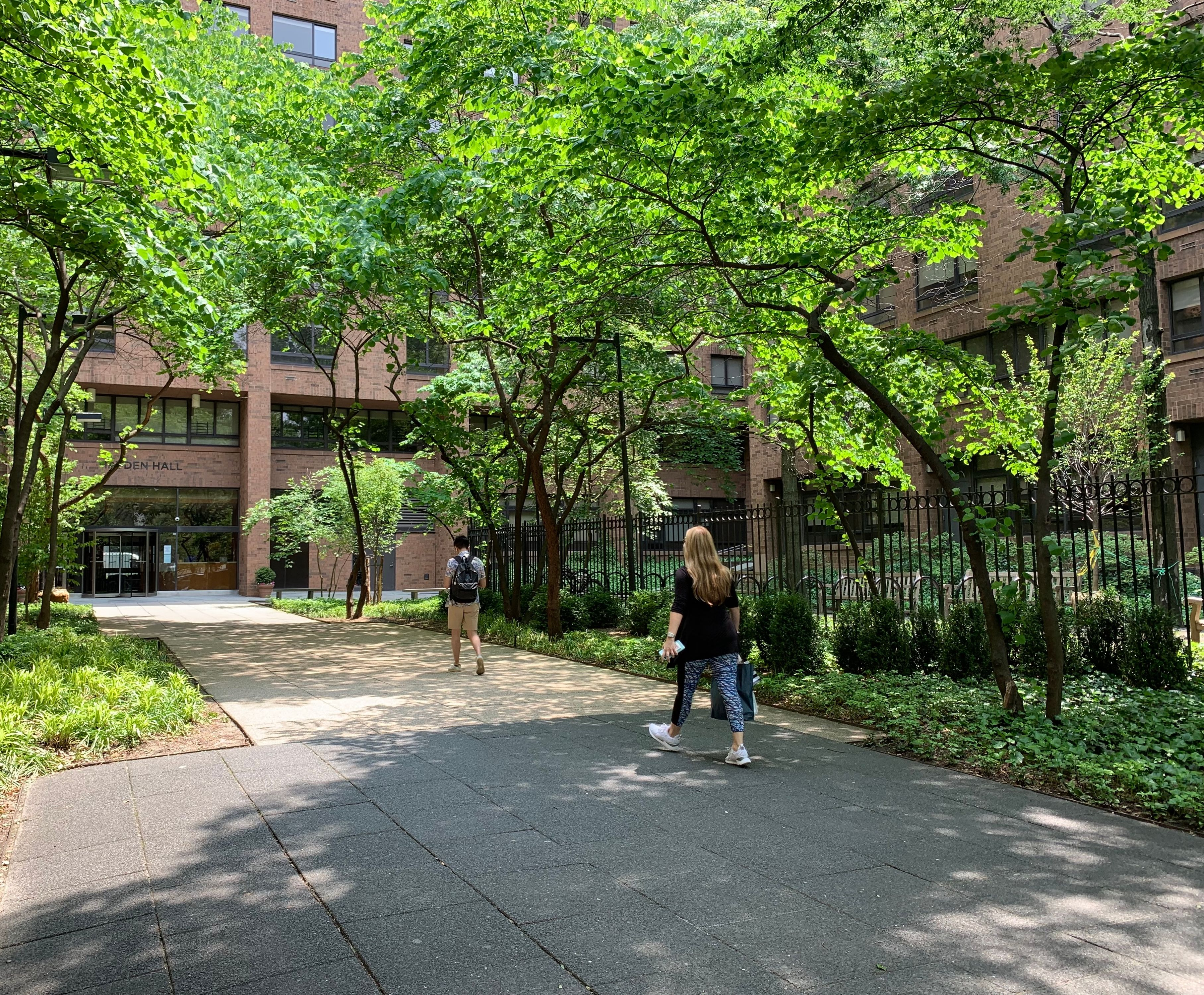 NYU Law School  Residence - Entry Plaza