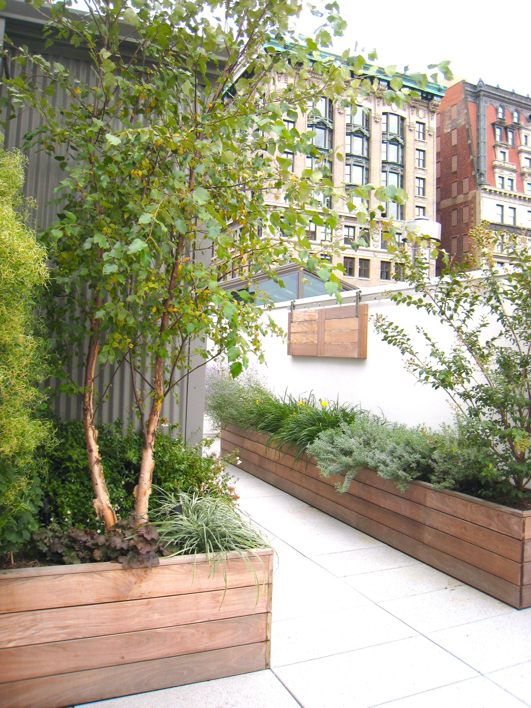 Park Avenue South Co-op Roof Garden