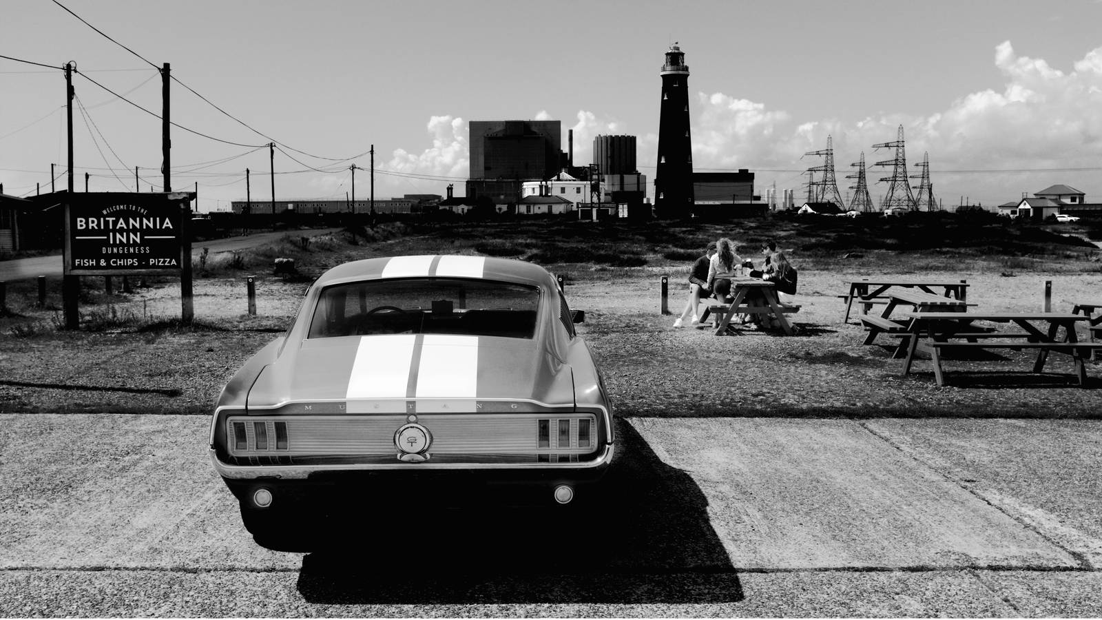 Mustang in Dungeness