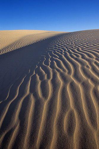 Sandhills 1