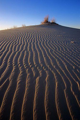 Sandhills 4