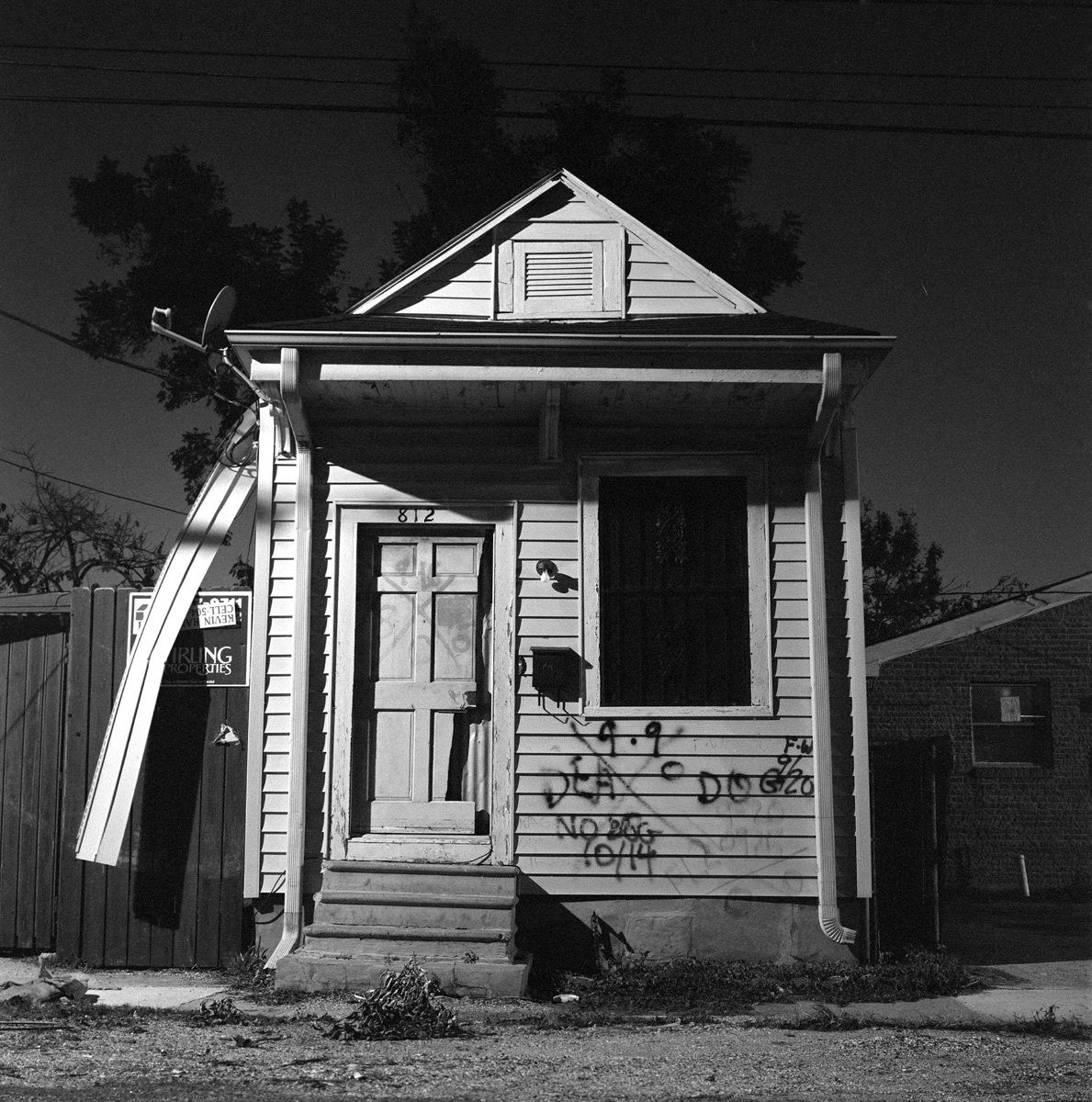 DOG, Lower Ninth Ward, 2006