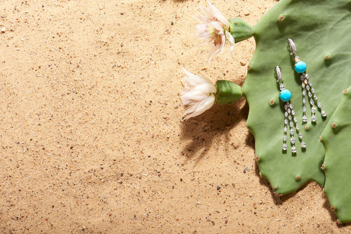 27-Cactus-721_RT_FG.jpg
