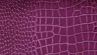 Q151-22 grape.jpg