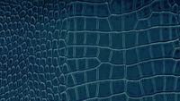 Q151-27 prussian blue.jpg