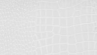 Q151-37 white.jpg