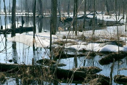 Long Pond Ironworks, Old Hewit, West Milford, NJ