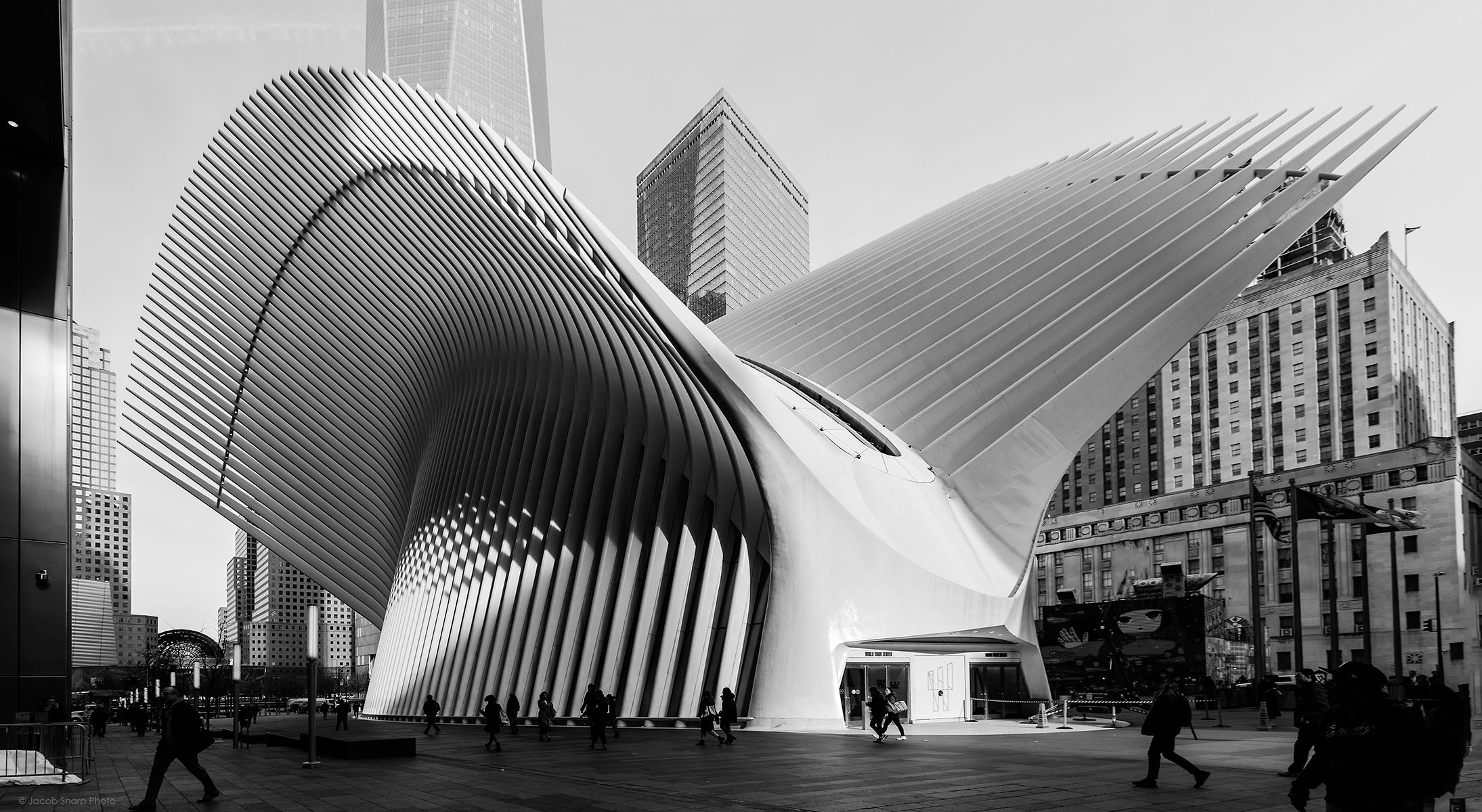 Oculus.New.York0.jpg