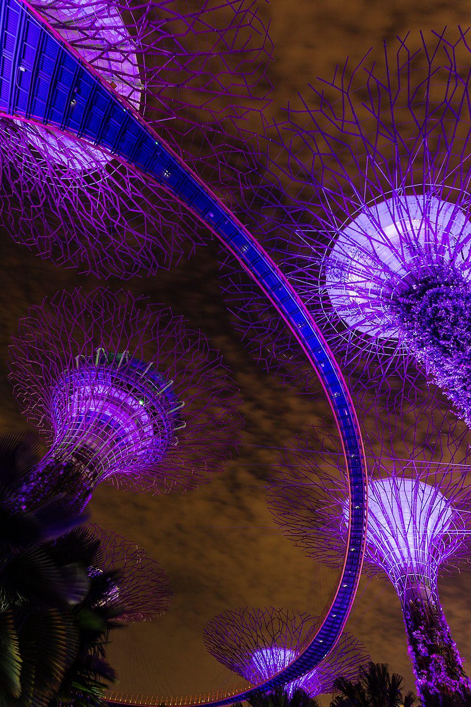 Singapore10.jpg