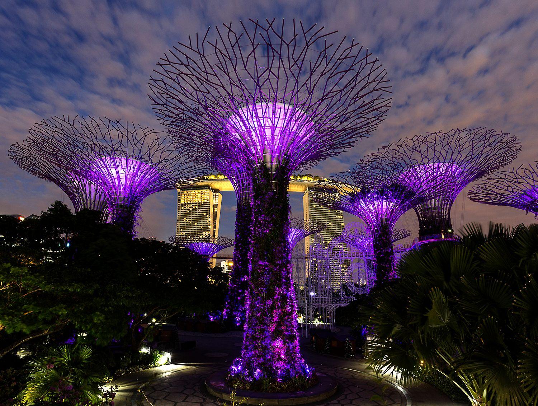 singapre6.jpg