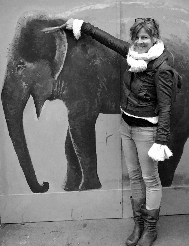 UZ Elephant.jpg