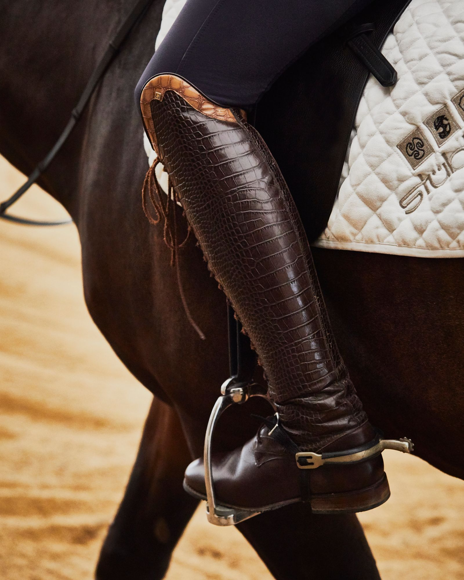 JR_NBH_Dressage_Horse_091318_0900.jpg